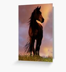 Beautiful Silhouetted Horse in Colorful Sundown Greeting Card