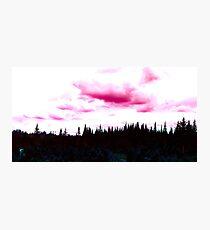 Wild Pink Nature Photographic Print