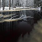 Winter landscape with river by Romeo Koitmäe