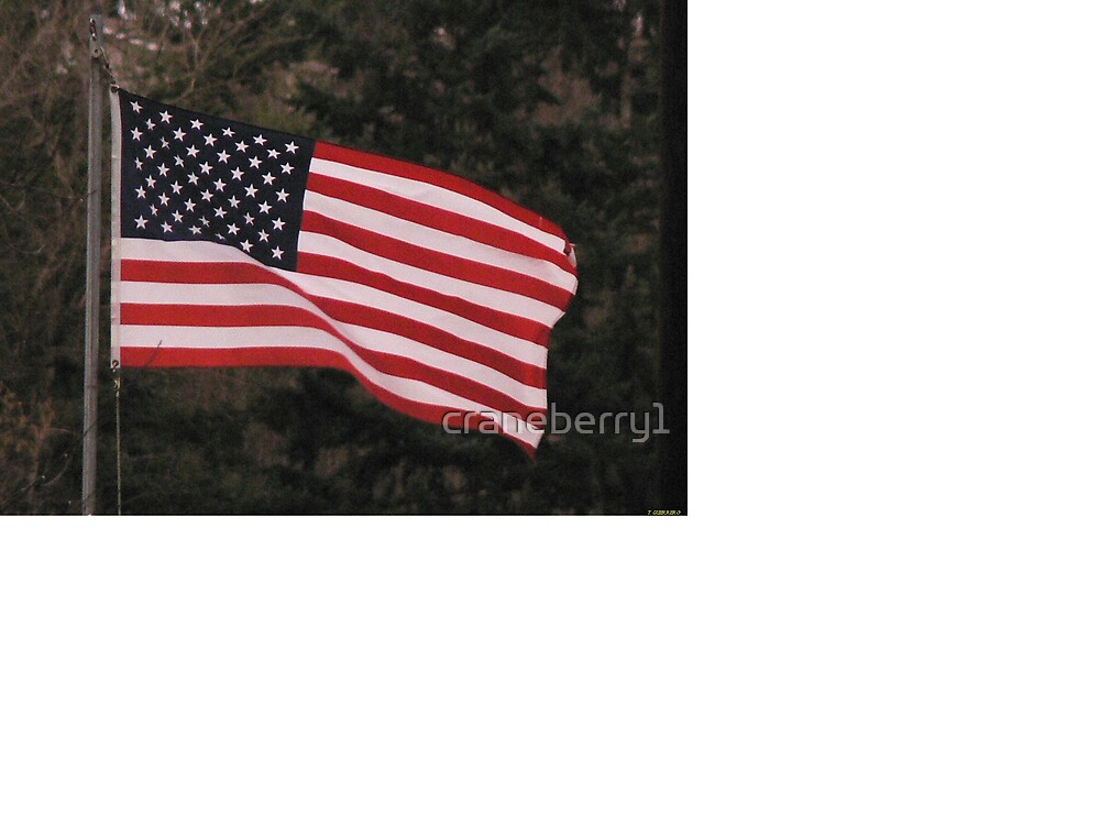 Old Glory by craneberry1