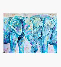 Colorful Elephants  Photographic Print