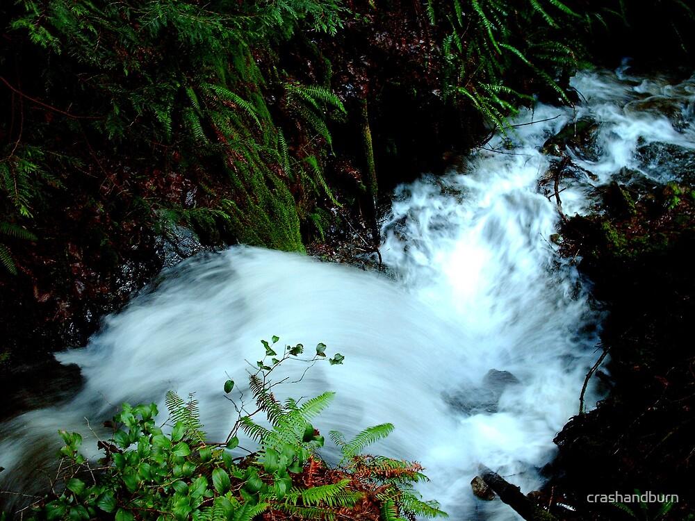 Wefer Creek Waterfall by crashandburn
