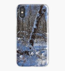 Clandestine Connections iPhone Case/Skin