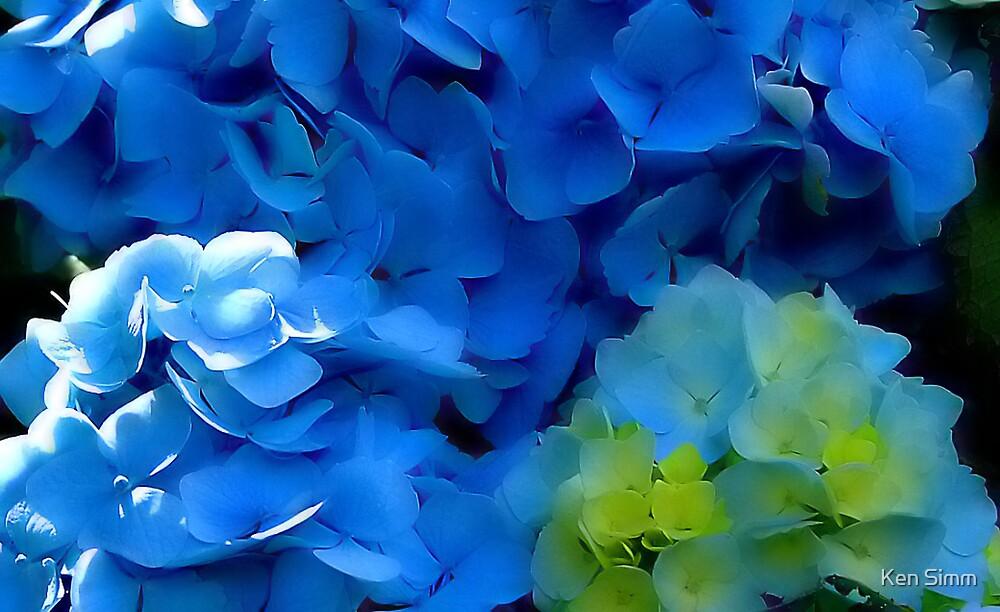 Blue by Kenart