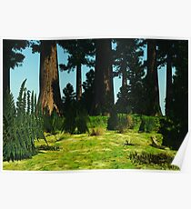 Forest Clearing Poster
