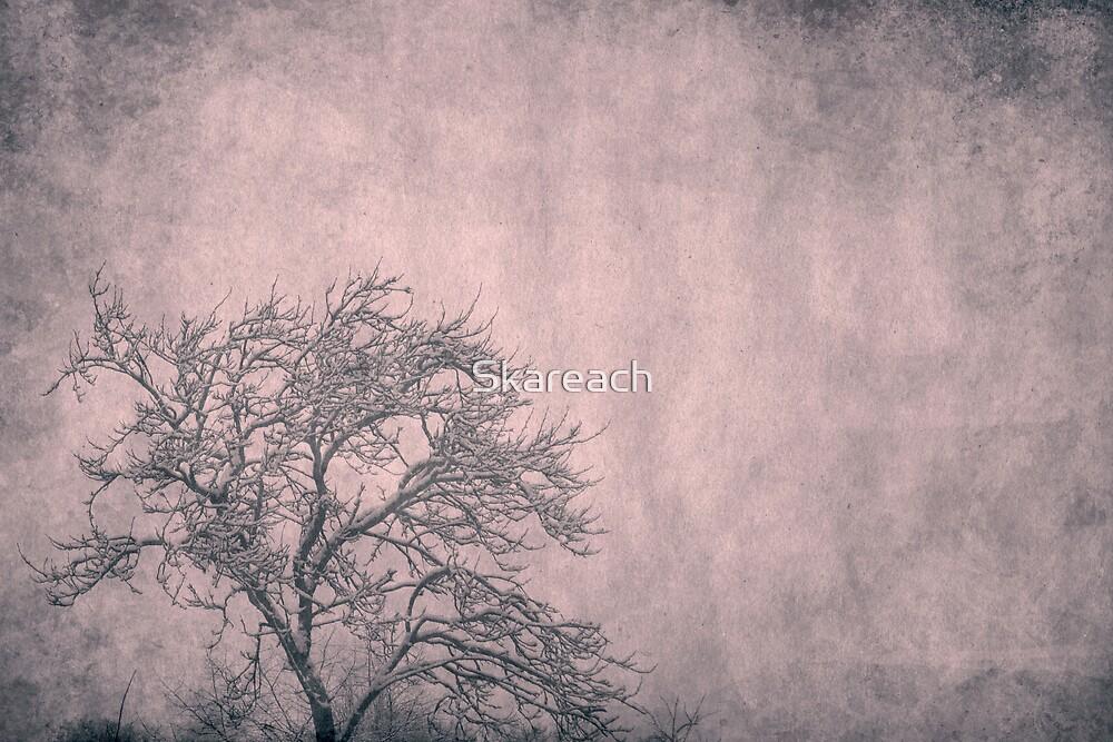 L O N E L Y by Skareach