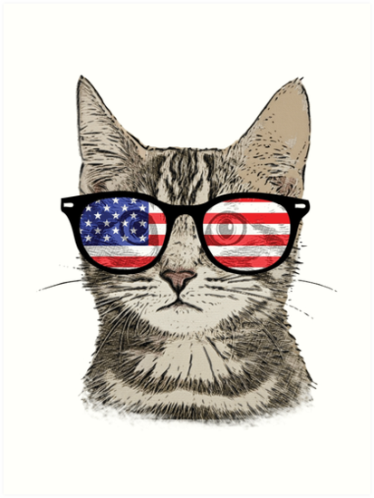 f1f91a8df0f0 USA America Cat Kitten Flag Patriotic Hipster Sunglasses