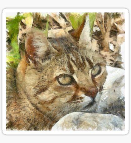 Relaxed Tabby Cat Resting In Garden Sticker
