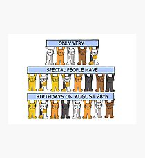 August 28th Birthday Cats Photographic Print