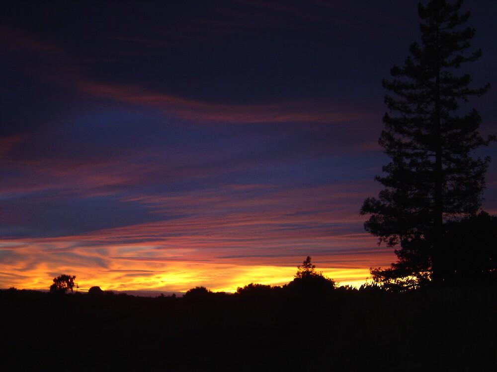 Northern Calif. Sunset Series by Jerry Stewart