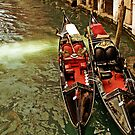 Venice, two gondole parked together waiting for tourists by gameover