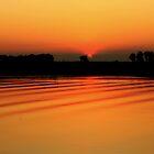 Kakadu Sunrise by myraj