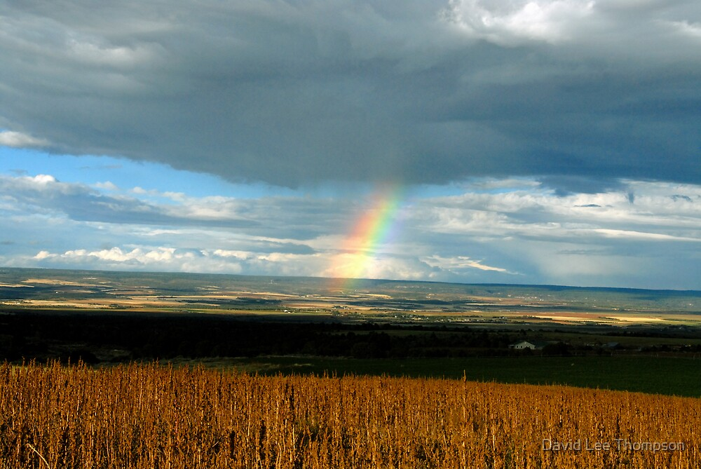 """Rainbow Tornado"" by David Lee Thompson"