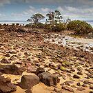0253 Rocky Beach - Tenby Point by Hans Kawitzki