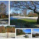 Redhill Winter by RedHillDigital