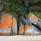 0264 Tidal River Rocks - Wilsons Prom by Hans Kawitzki