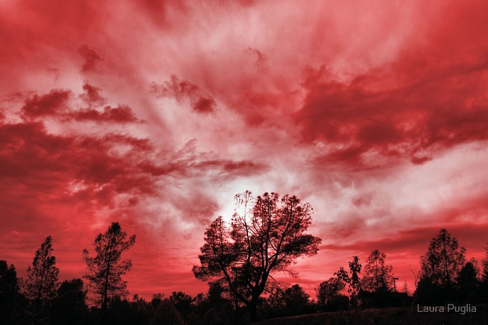Sky's On Fire by Laura Puglia