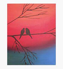 love birds of romance rainbow edition Photographic Print