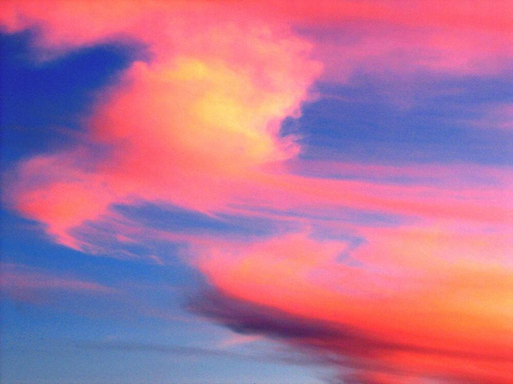 Sydney sky 05 by dajen edelkoort