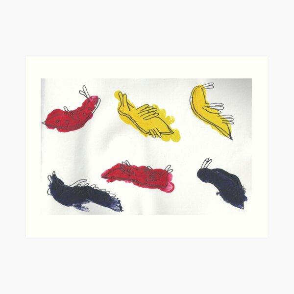 The Nudibranch or Sea Slug Art Print