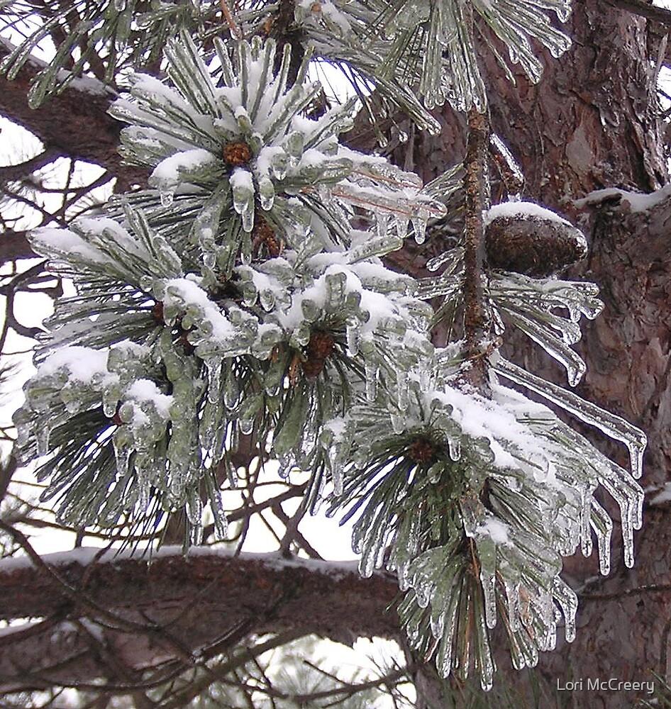 Pine Cone on Ice by Lori McCreery