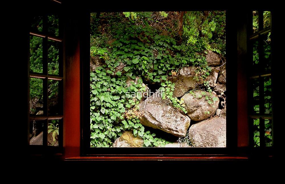 Red Rear Window by sandhill