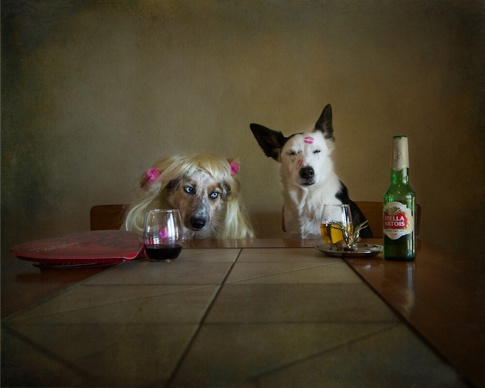 Days of wine and roses by Texas Sheepdogs