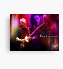 David Gilmour Canvas Print