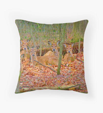 Deer in Deerfield, Illinois Throw Pillow