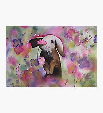 Floral Bunny Photographic Print