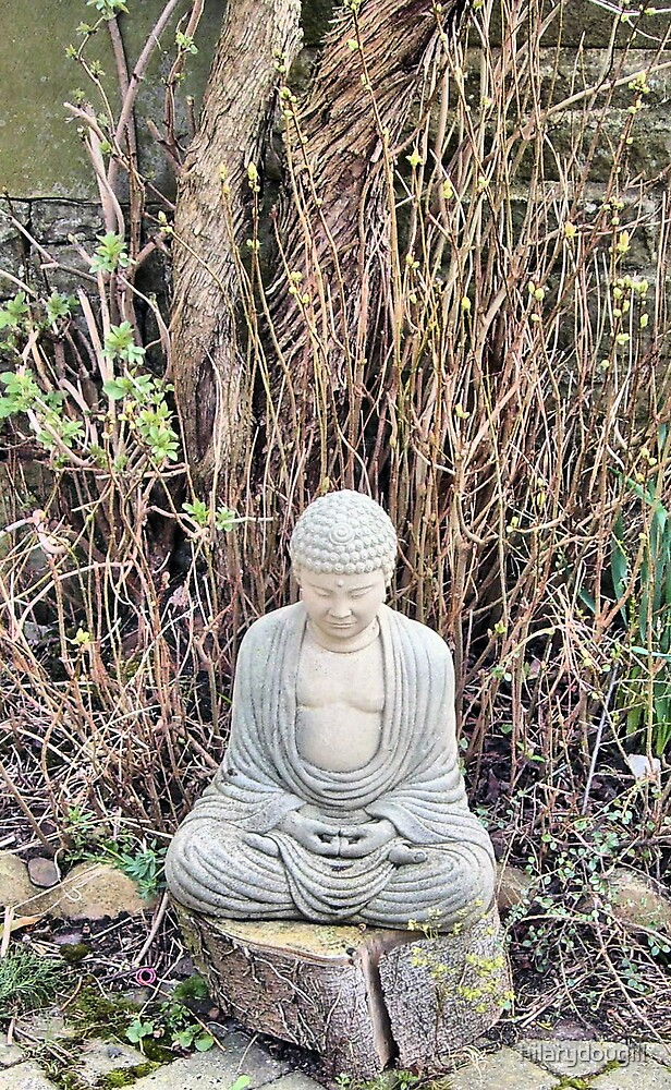 Buddha in his wisdom waiting for Spring by hilarydougill