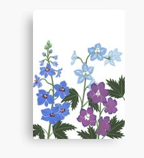 Delicate blue and purple flowers Canvas Print