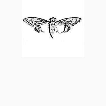 Cicada 3301 by woookie