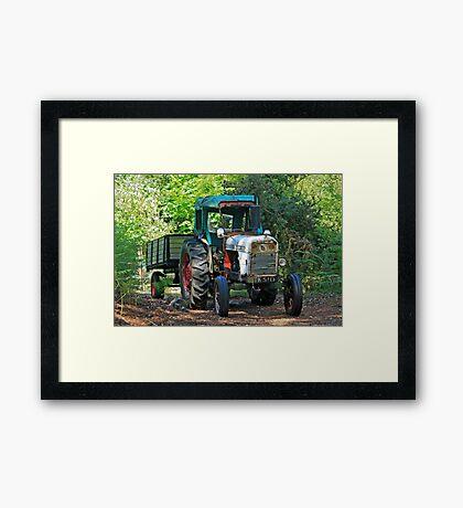 Vintage David Brown Framed Print