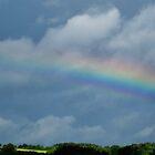 Brent Rainbow by lezvee