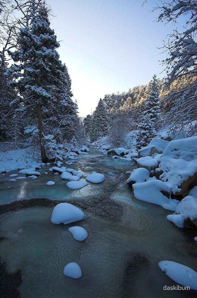 Colorado Winter 3 by daskibum