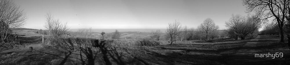 Exmoor Panorama by marshy69