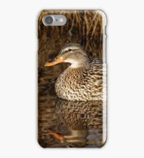 Mallard Duck Reflecting iPhone Case/Skin