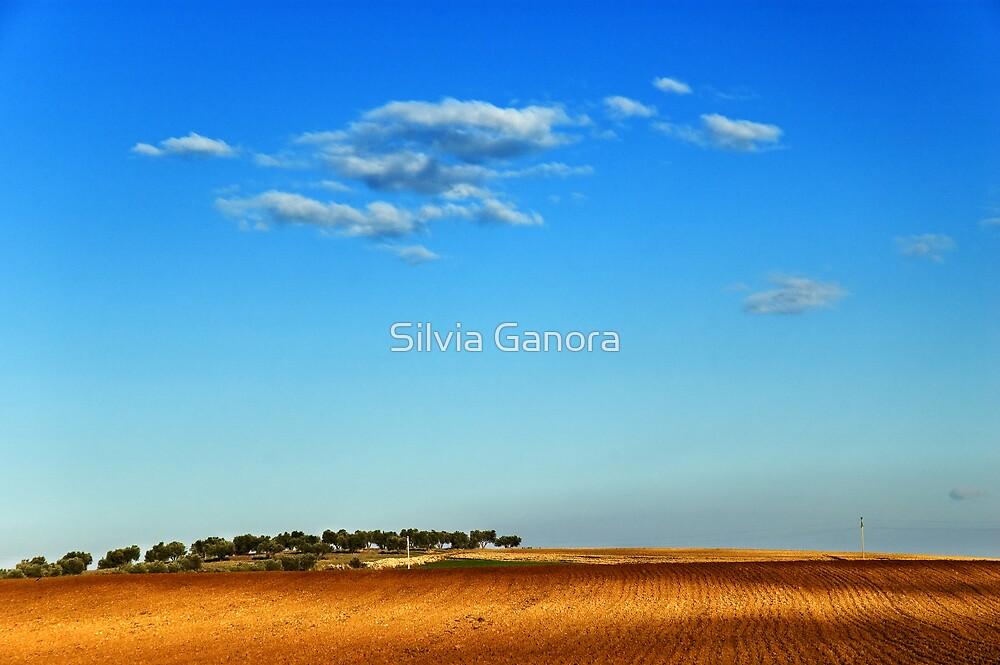 Hill by Silvia Ganora
