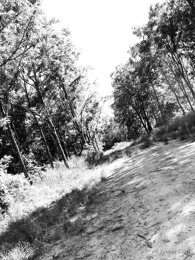 Country Road II by Amber Kipp