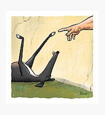 Die Hand des Hundes Fotodruck