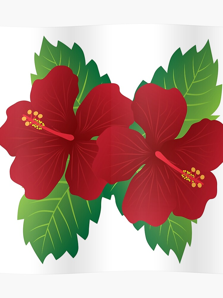 Red Hibiscus Flowers With Leaves Color Illustration Poster By