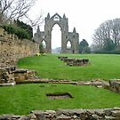 Guisborough Priory  3 by dougie1