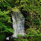 This is my shot of Falling Foss by dougie1