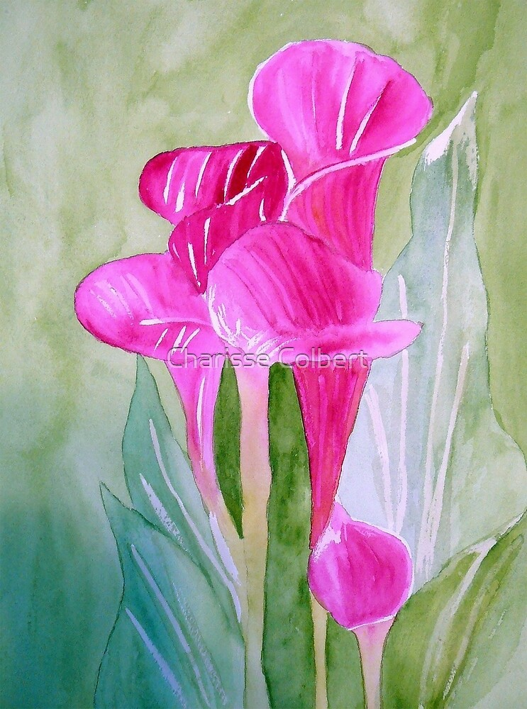 Calla Lily by Charisse Colbert