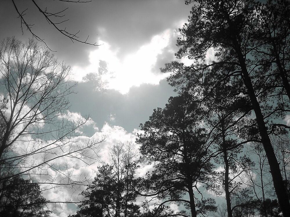 Dismal sky by Caitiebug