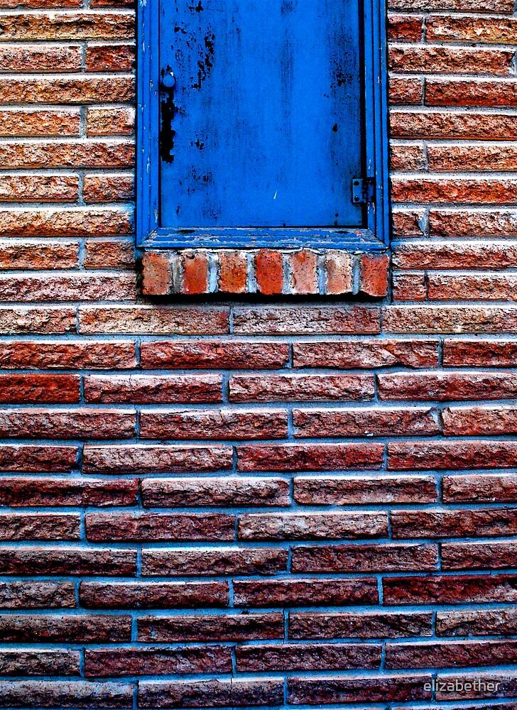 blue_door by elizabether