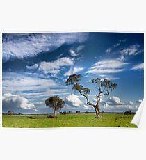 0280 Rural Landscape - Anakie Poster