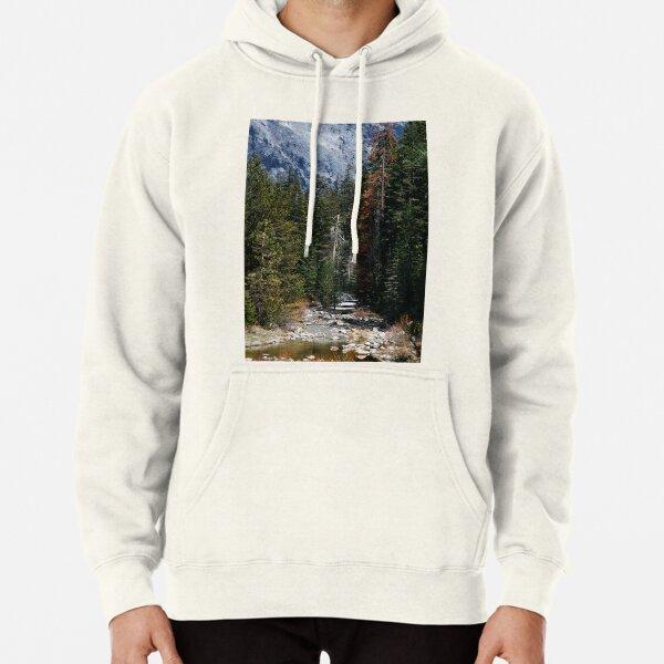 Sequoia National Park Mens Hoodie