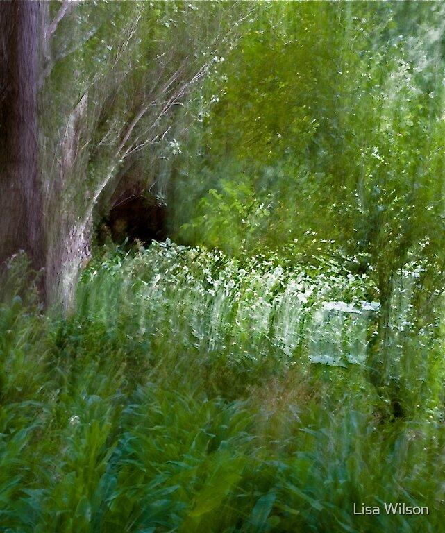 Secret Garden II by Lisa Wilson